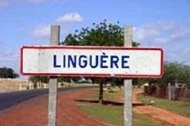 Kébékhakham dans le département de Linguère : Le village de Demba Bouna Sy , grand père de Seydi El Hadji Malick Sy manque de tout