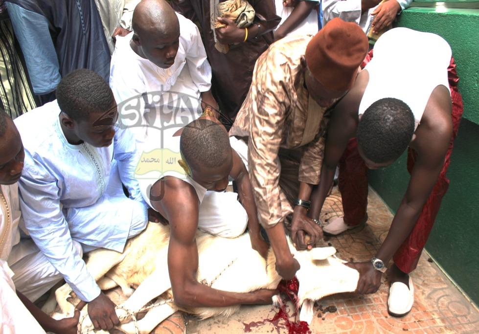 L'Imam Ousmane Diop sacrifiant au rite Abrahamique
