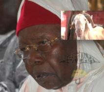 VIDEO - TABASKI 2013 - Serigne Abdoul Aziz Sy Al Amine distribue des centaines de moutons d'une valeur de 40 Millions de Fcfa