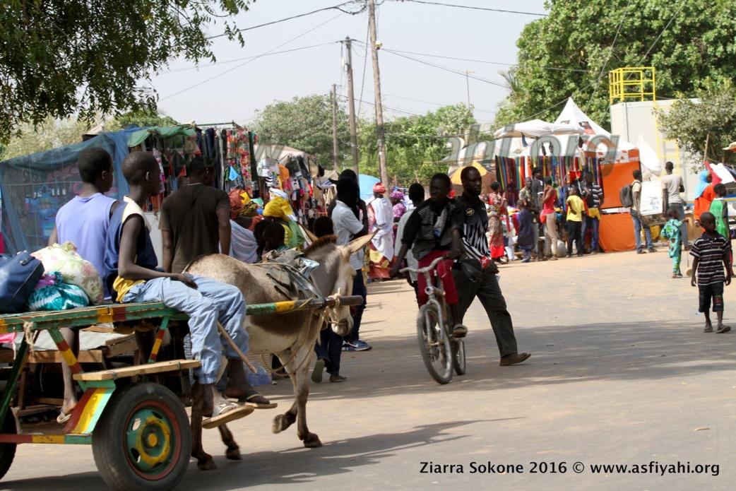 PHOTOS - SOKONE - Découvrez les Images de la Ziarra Sokone 2016, Nuit du Gamou , Cérémonie Officielle et quelques temps forts