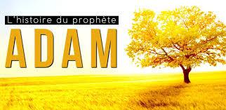 Histoire d'Adam partie 03: La vie sur terre