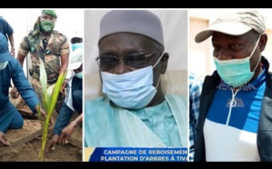 TIVAOUANE: CAMPAGNE DE REBOISEMENT 2020 - Abdou Karim Sall reçu par Serigne Babacar Sy Mansour