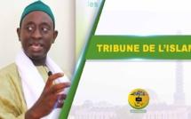 VIDEO - TRIBUNE DE L'ISLAm - Invité Serigne Mame Cheikh Mbacké Coordinateur de l'association islamique pour Servir le soufisme (AIS)
