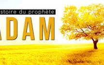 histoire des prophètes: le prophète Adam partie 05 (le premier Homme et la science moderne)