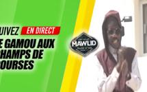 DIRECT - Nuit du Mawlid 2019, En Direct Champs des Courses Tivaouane avec Serigne Moustapha SY