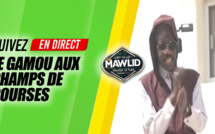 DIRECT TIVAOUANE - CHamps de Courses - Conference Lendemain Gamou de Serigne Muustapha SY