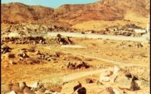 17 Ramadân - La Bataille de Badr ou le premier combat décisif de l'islam