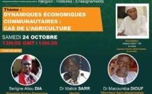 WEBINAIRES GAMOU 2020 - Théme 2 : DYNAMIQUES ÉCONOMIQUES COMMUNAUTAIRES: LE CAS DE L'AGRICULTURE